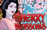Автомат казино Вулкан Cherry Blossoms